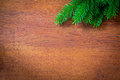 Christmas fir tree on a wooden board backgrounds Royalty Free Stock Photos