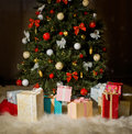 Christmas firtree beautiful with gift on dark brown background Stock Photos