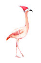 Christmas flamingo in red santa's hat. Watercolor bird Royalty Free Stock Photo