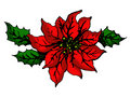 Christmas flower Royalty Free Stock Photography
