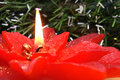 Christmas Flower Lit Candle