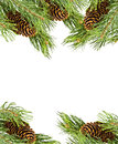 Christmas frame made of fir branches Stock Image