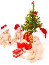 Christmas friends Fotografering för Bildbyråer