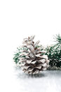 Christmas garland with pine cone on white background Royalty Free Stock Photos