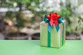 Christmas gift box in nature background Royalty Free Stock Photo