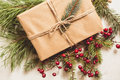 Christmas gift with conifer needles and red seed Stock Photos