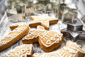 Christmas gingerbread cookies and metal cookie cutters on white Royalty Free Stock Photo
