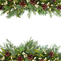 Christmas greenery border floral background with mistletoe ivy pine cones and winter over white Stock Photo