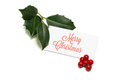 Christmas greetings greeting card with holly berries and leaves Royalty Free Stock Photo
