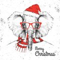 Christmas Hipster fashion animal elephant dressed in New Year hat and scarf