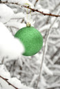 Christmas holiday decoration ornament shiny green winter tree Stock Photography