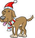 Christmas Holiday Dog Stock Image
