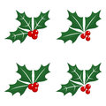 Christmas holly - green leaf, red berry, twig