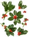 https---www.dreamstime.com-stock-illustration-christmas-holly-berry-symbols-vector-illustration-icon-christmas-holly-berry-symbols-image111509930