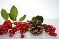 Christmas holly and pine cone Royalty Free Stock Photo