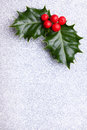 Christmas holly with red berries in the top of the corner on silver background Stock Photo