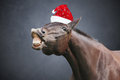Christmas horse with hat dark Royalty Free Stock Images