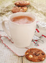Christmas hot cocoa and chocolate cookies with hazelnuts Royalty Free Stock Photography