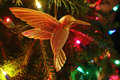 Christmas Hummingbird Decoration Stock Images