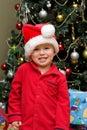 Christmas joy Royaltyfri Fotografi
