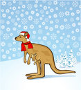 Christmas kangaroo Royalty Free Stock Photography