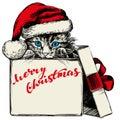 Christmas kitten in Santa stocking hat hand drawn vector illustration sketch Royalty Free Stock Photo
