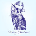 Christmas kitten in Santa stocking hat hand drawn Royalty Free Stock Photo
