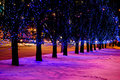 Christmas lights in street Royalty Free Stock Photo