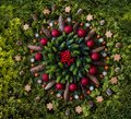 stock image of  Christmas mandala with nature elements