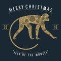Christmas mechanical monkey Royalty Free Stock Photo