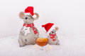 Christmas mice with cognac glass in snow happy Stock Photos