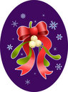 Christmas mistletoe Stock Images