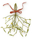 Christmas mistletoe, kissing ball Stock Images