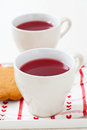 Christmas mulled wine and gingerbread biscuits Royalty Free Stock Photo