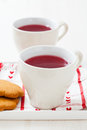 Christmas mulled wine and gingerbread biscuits Royalty Free Stock Image