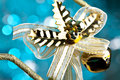 Christmas and new year decoration Royalty Free Stock Photography