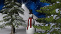 Christmas Night Star with a Snowman and fir trees Royalty Free Stock Photo