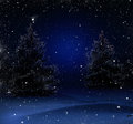 Christmas night in the woods Royalty Free Stock Image