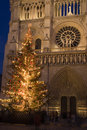 Christmas at Notre-Dame Royalty Free Stock Images