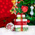 Christmas Ornament Poinsettia's & Presents Stock Images