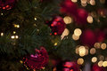 Christmas ornaments in a tree red hanging from green with red and golden bokeh lightning the background Royalty Free Stock Images