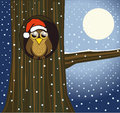 Christmas owl Stock Image