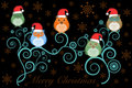 Christmas Owls with Santa Hat on Tree on Black Royalty Free Stock Photo