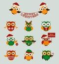 Christmas owls. Vector set. Royalty Free Stock Photo