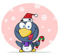 Christmas penguin holding a candy cane Stock Photos