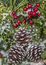 Christmas pine cones and berries