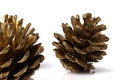 Christmas pine cones resting on a white table background Stock Photo
