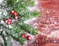 Christmas pine tree branch on a wooden board Royalty Free Stock Images