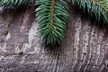 Christmas pine tree branch on a wooden board Stock Photography