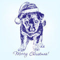 Christmas puppy in Santa stocking hat hand drawn Royalty Free Stock Photo